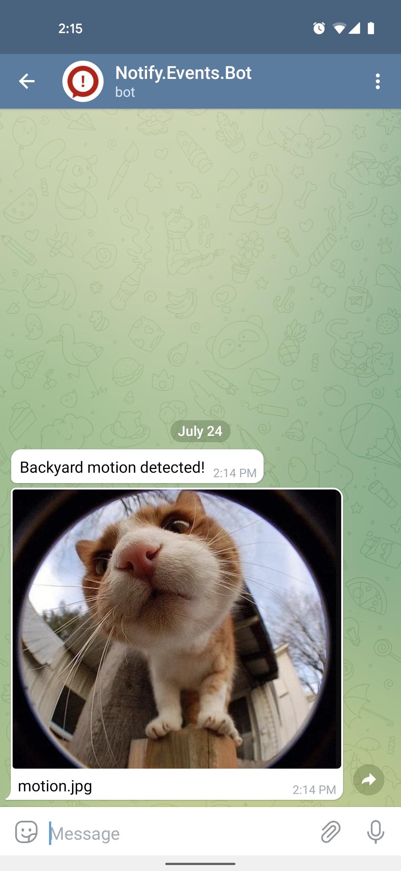 Home Assistant Notify Telegram